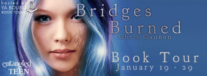 bridges burned tour banner