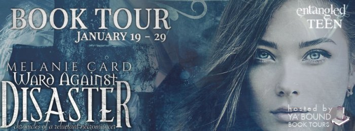 ward against disaster tour banner